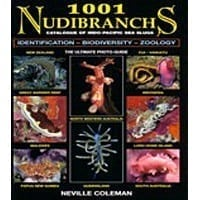 1001 Nudibranches